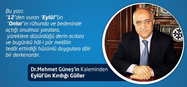Eylül'ün Kırdığı Güller – Dr. Mehmet Güneş