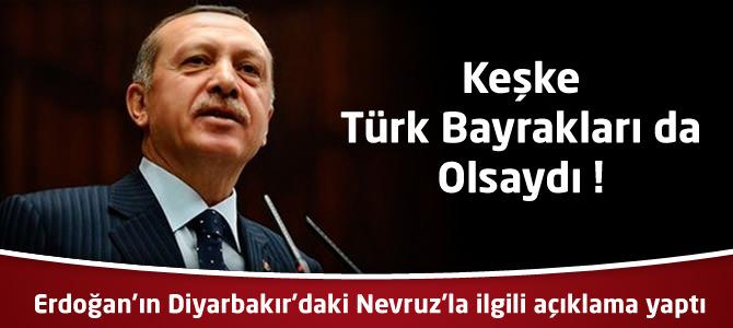 Erdoğan'ın Diyarbakır'daki Nevruz'la ilgili açıklama yaptı