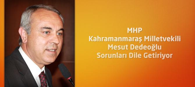 MHP Kahramanmaraş Milletvekili Dedeoğlu Sorunları Dile Getiriyor