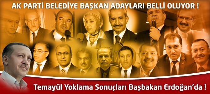 AK Parti Temayül Yoklama Sonuçları Başbakan Erdoğan'da !