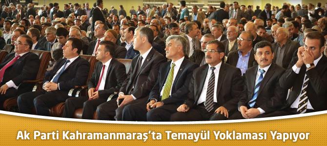 AK Parti Kahramanmaraş'ta Temayül Yoklaması Yapıyor