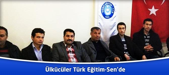 Elbistan'da Ülkücüler Türk Eğitim-Sen'de