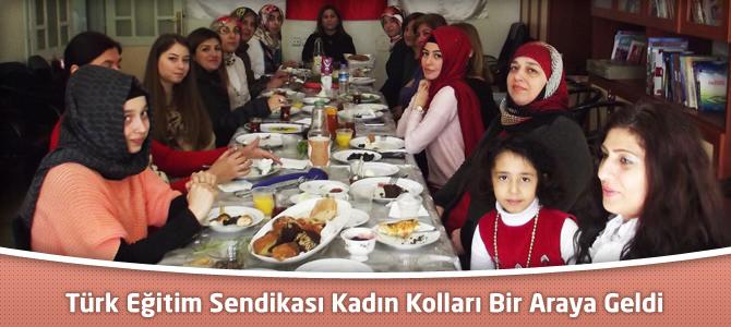 Türk Eğitim Sendikası Kadın Kolları Bir Araya Geldi