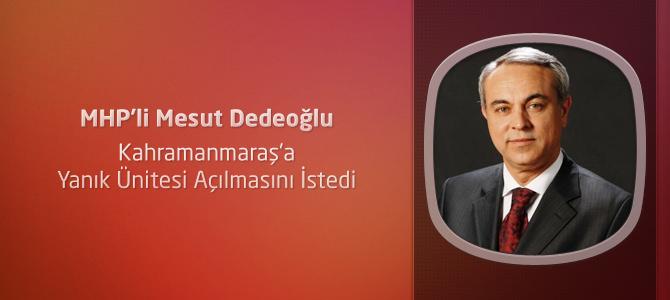 Dedeoğlu, Kahramanmaraş'a Yanık Ünitesi Açılmasını İstedi