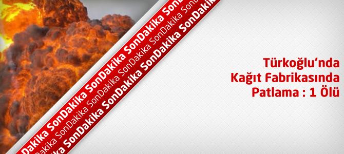 Türkoğlu Kağıt Fabrikasında Patlama : 1 Ölü