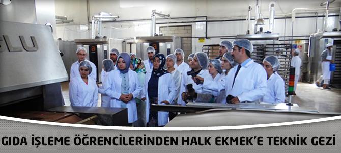 Gıda İşleme Öğrencilerinden Halk Ekmek'e Teknik Gezi