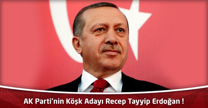 AK Parti'nin Cumhurbaşkanı Adayı Recep Tayyip Erdoğan !
