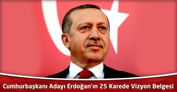 Cumhurbaşkanı Adayı Tayyip Erdoğan'ın 25 Karede Vizyon Belgesi