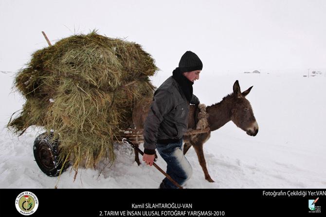 tarım ve insan fotoğraf yarışması (13) copy
