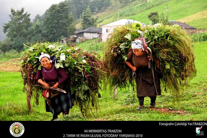 tarım ve insan fotoğraf yarışması (3) copy