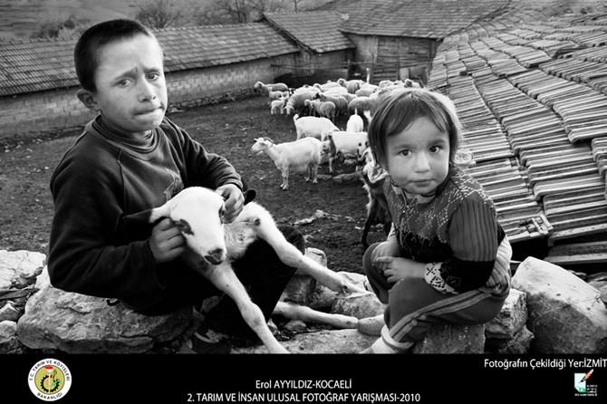 tarım ve insan fotoğraf yarışması (8) copy
