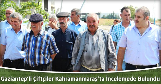Gaziantepli Çiftçiler Kahramanmaraş'ta İncelemede Bulundu