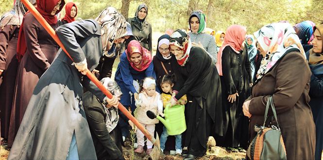 Kahramanmaraş'ta Kutlu Doğum Haftası'na Özel Fidan Dikimi