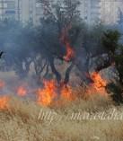 Kahramanmaraş'ta Anız Yakılmasının Önlenmesi için Eğitim Verildi