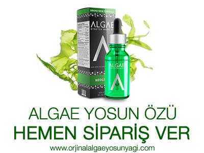 Algae Yosunu Özü Nedir? Algae Yosunu Özü Kullanıcı Yorumları