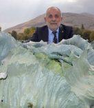 Elbistan Lahanasını Türkiye Tanıyacak