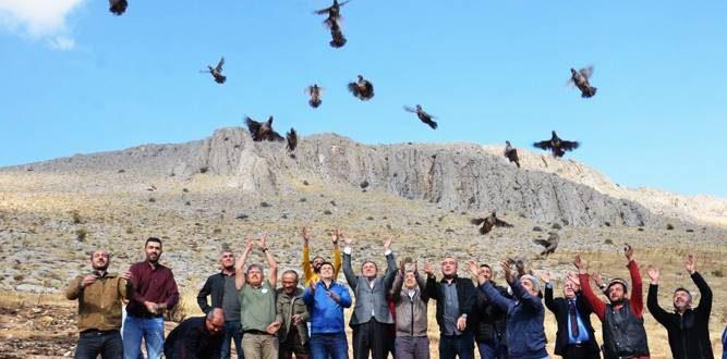Kınalı Keklikler Özgürlüğe Uçtular