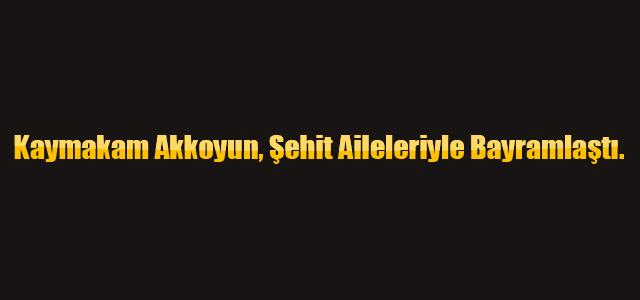 Kaymakam Akkoyun, Şehit Aileleriyle Bayramlaştı