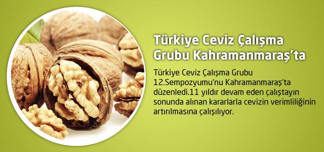 Türkiye Ceviz Çalışma Grubu Kahramanmaraş'ta