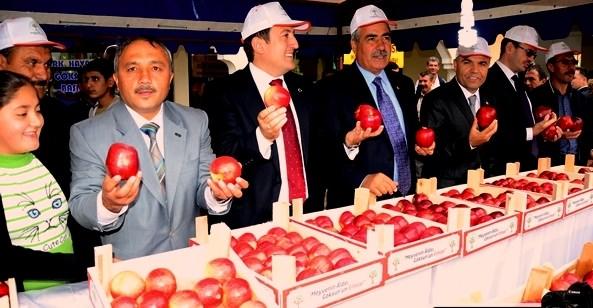 """1.Göksun Elma Festivali"""" yapıldı"""