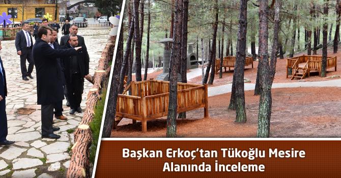 Başkan Erkoç'tan Tükoğlu Mesire Alanında İnceleme