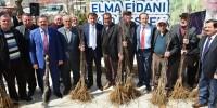 Kahramanmaraş'ta Çiftçilere 14.000 Elma Fidanı Dağıtıldı