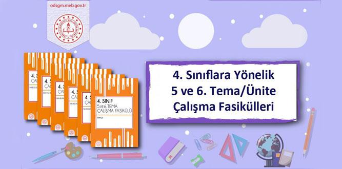 4. Sınıflara Yönelik 5 ve 6. Tema/Ünite Çalışma Fasikülleri